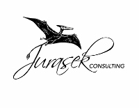 Jurasek  Consulting